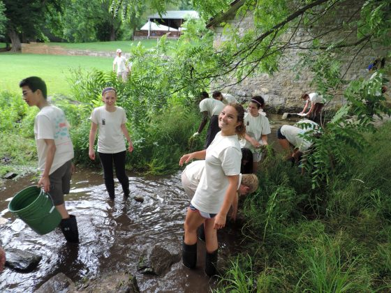 student volunteers removing exotic plants from Town Run